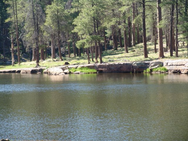 Aspen campground woods canyon lake camp arizona woods canyon lake aspen campsite publicscrutiny Image collections