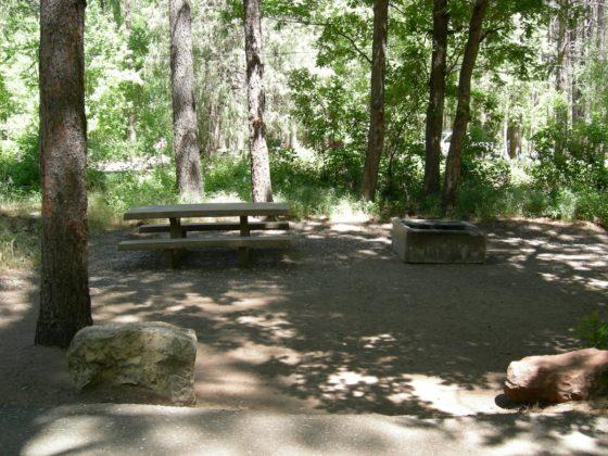 Cave Springs Campsite