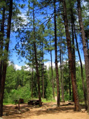 Upper Tonto Campgorund