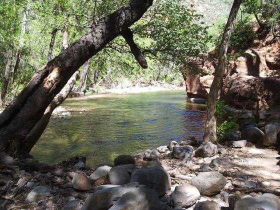 Oak Creek at Manzanita Campground