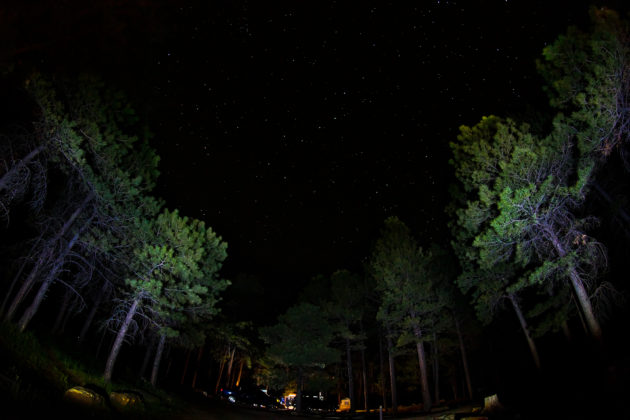 Aspen campground at night