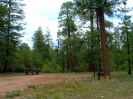 Black Canyon Rim Campground