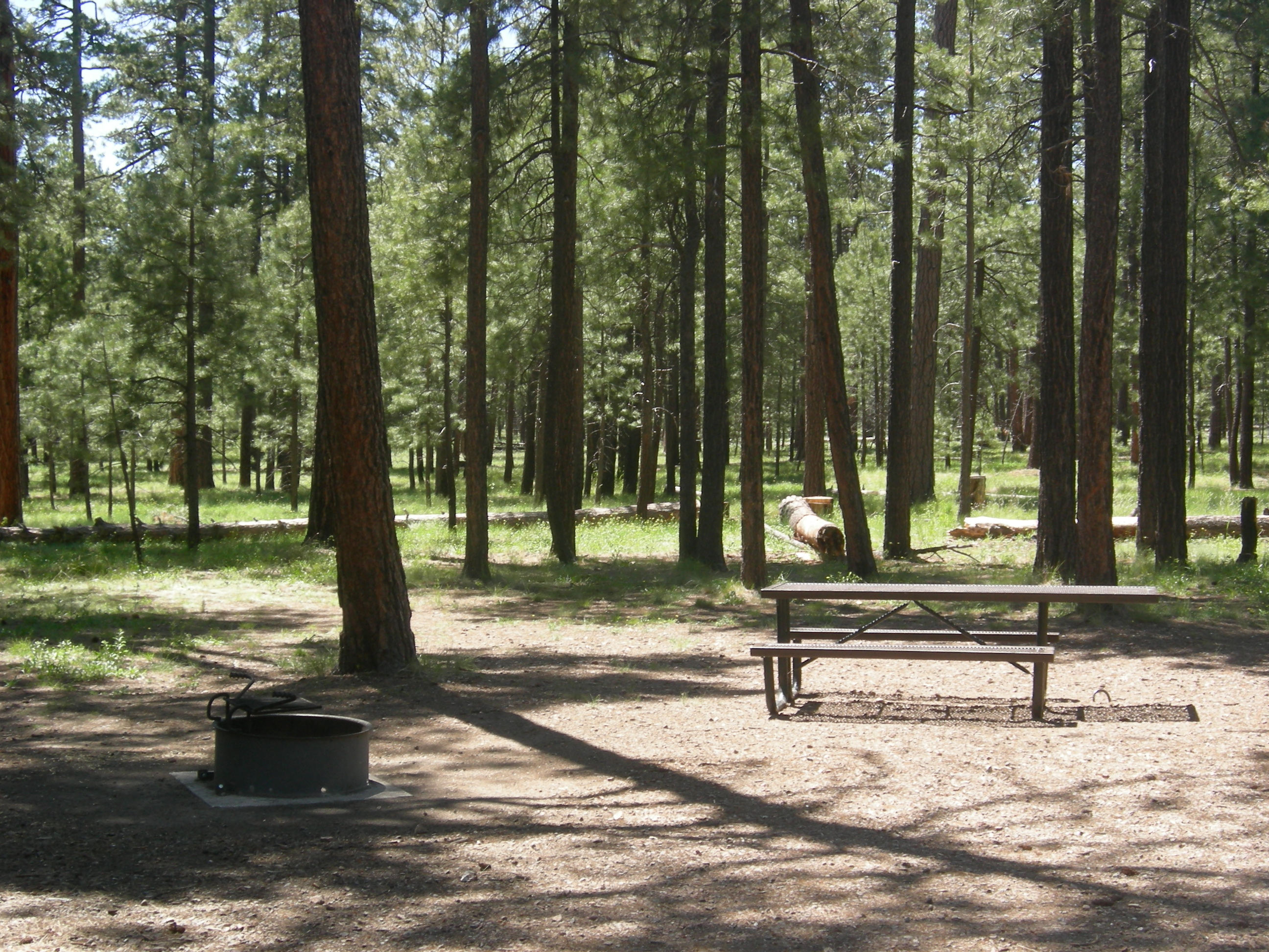 Campgrounds in payson with hookups