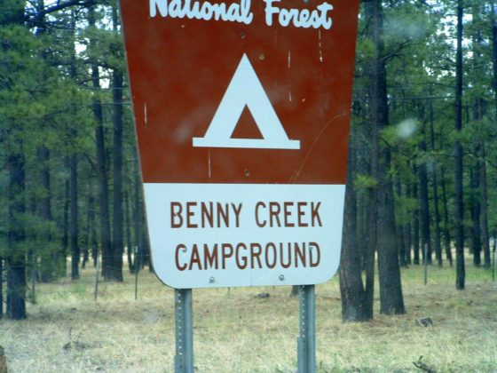 Benny Creek Campground