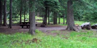 Brookchar Campground