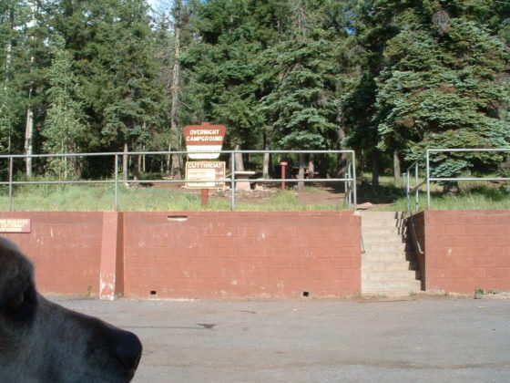 Cutthroat Campground
