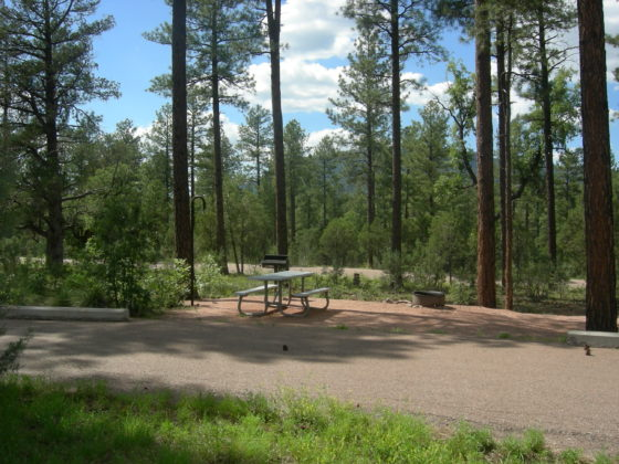 Sharp Creek Campground