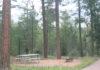 Sharp Creek Campground