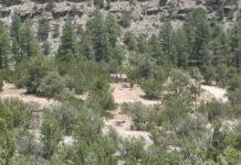 Chevelon Crossing Campground