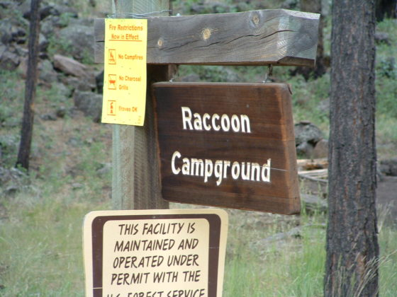 Raccoon Campground