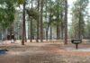 Gentry Campground