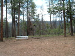 Valentine Ridge Campground