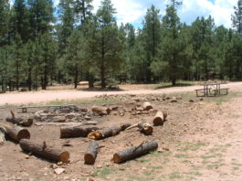 Woods Canyon Lake Group Campground