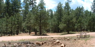 Woods Canyon Lake Group Campground