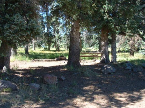 KP Cienega Campground