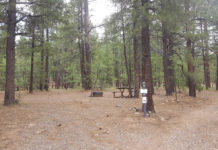 Dairy Springs Campground | CampAZ