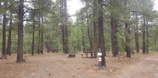 Dairy Springs Campground | CampAZ