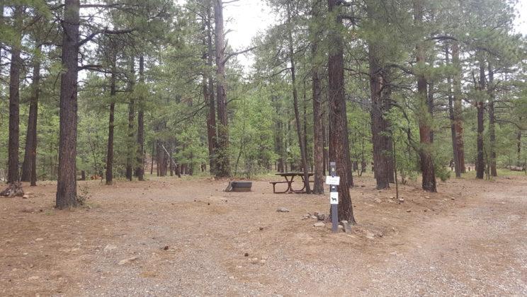 Dairy Springs Campground   CampAZ