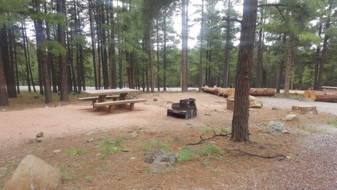 Lakeview Campground   CampAZ