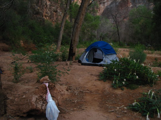 Havasu Campsite | Camp Arizona