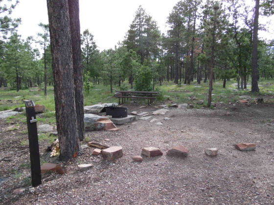 Mogollon Campground - Campsite #15