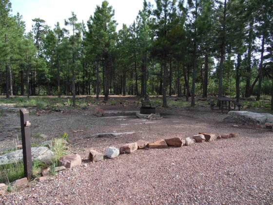 Mogollon Campground - Campsite #17