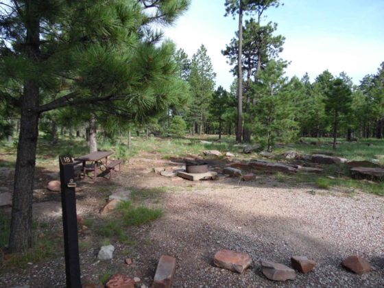 Mogollon Campground - Campsite #18