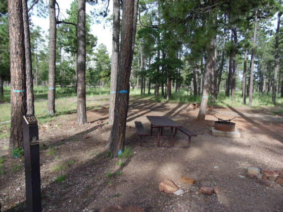 Mogollon Campground - Campsite #20