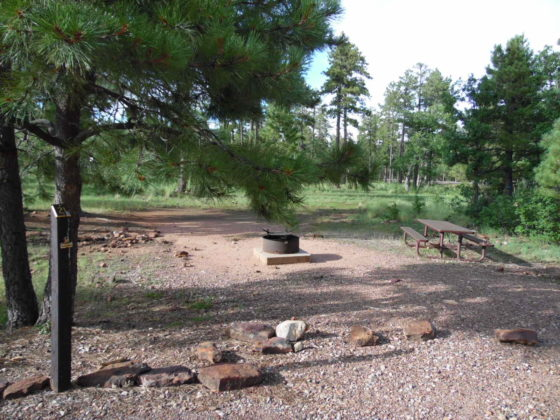Mogollon Campground - Campsite #21