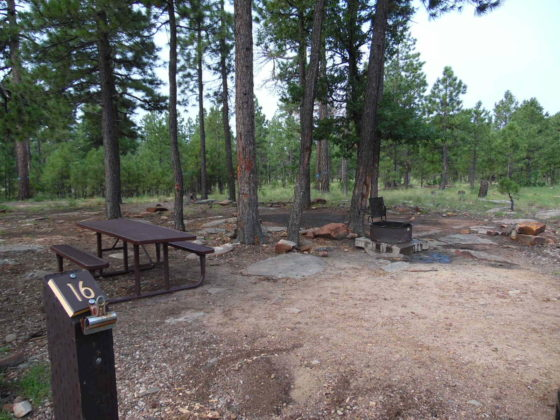 Mogollon Campground - Campsite #16