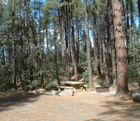 Lower Wolf Creek Campground