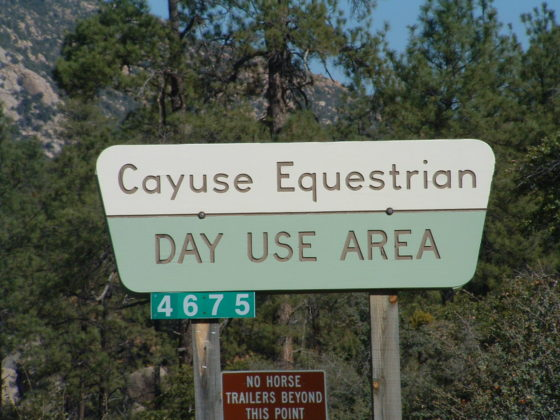 Cayuse Day Use Area