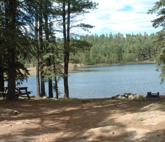 Hawley Lake Campground
