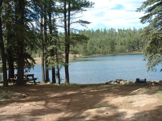Hawley Lake Campground